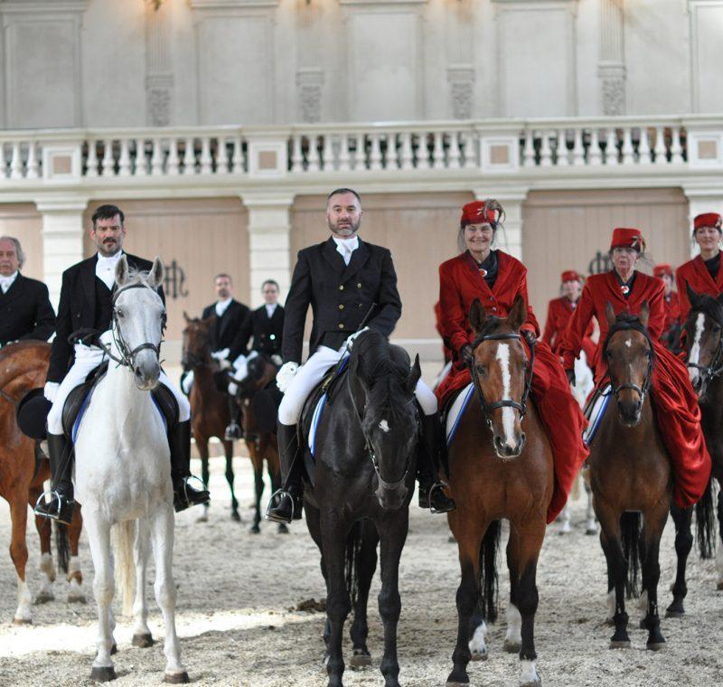 hollansche-manege-balkon-paarden
